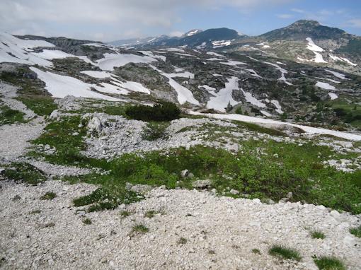 Monte Ortigara - Avvallamenti sulla cima